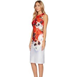 Adrianna Papell Poppy Delight Midi Sheath Dress